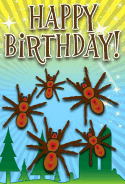 Spider Birthday Card