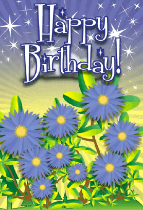 Aster Flower Birthday Card Greeting Card