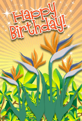 Bird of Paradise Birthday Card Greeting Card