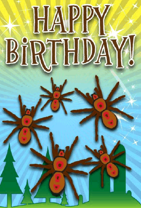 Spider Birthday Card Greeting Card