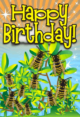 Yellowjacket Insect Birthday Card Greeting Card