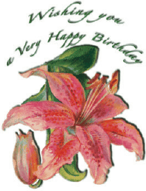 Birthday Card with Flowers (small) Greeting Card